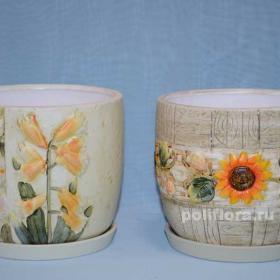 керамический набор, керамика, горшки, кашпо, декор, дизайн, качество, ассортимент