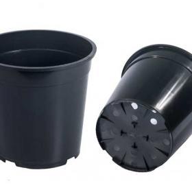 Горшок для рассады высокий RH9,5  черный