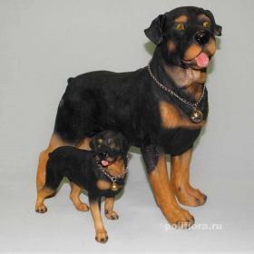 Собака Ротвейлер  К023417;  К033010