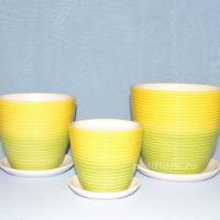 Керам.набор Радуга желто-зеленый крокус х3