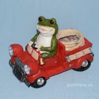 Лягушка на машине XY140068
