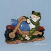 Лягушка на мотоцикле XY130562