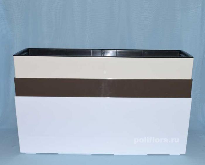 Бегония ящик белый, кремовый, фраппе