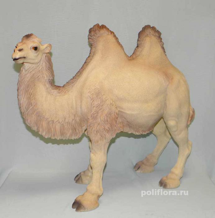 Верблюд 48 см 4399